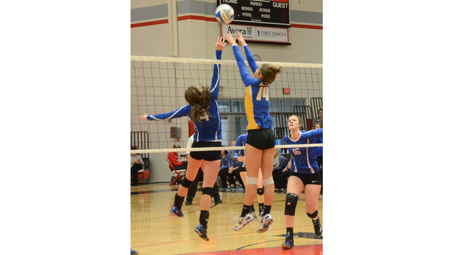 HS volleyball players