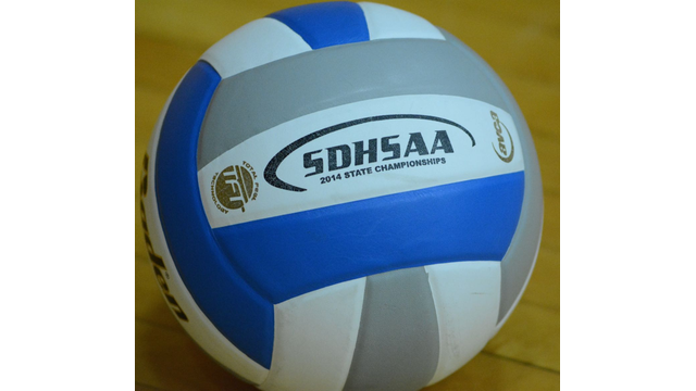 picture of a volleyball