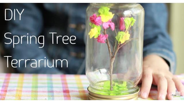 tree terrarium