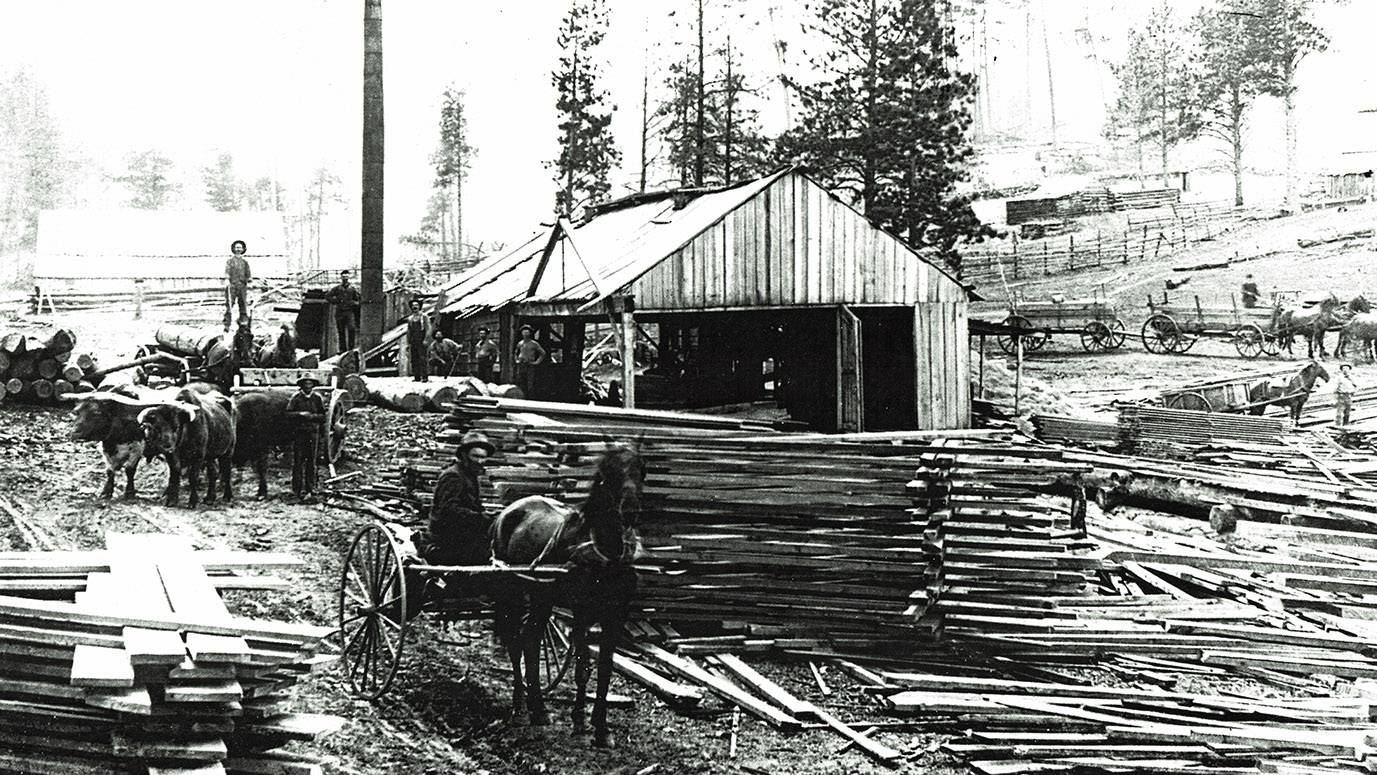 Sawmill in the Black Hills