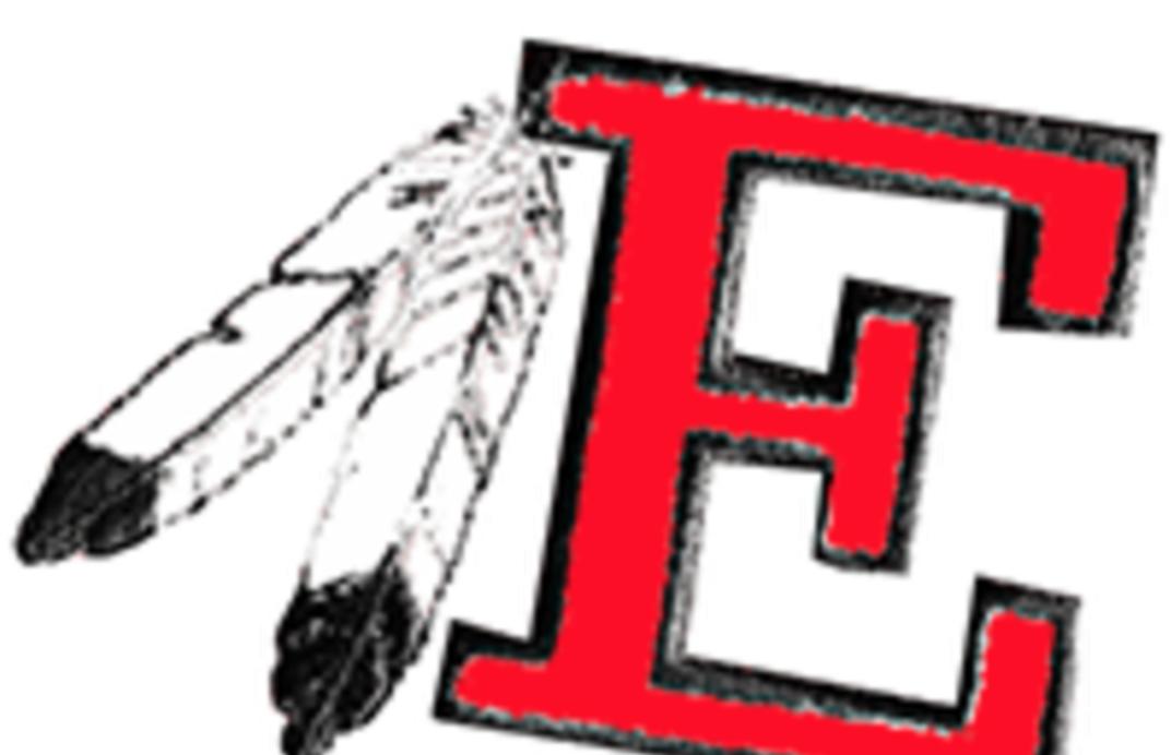 Estelline logo