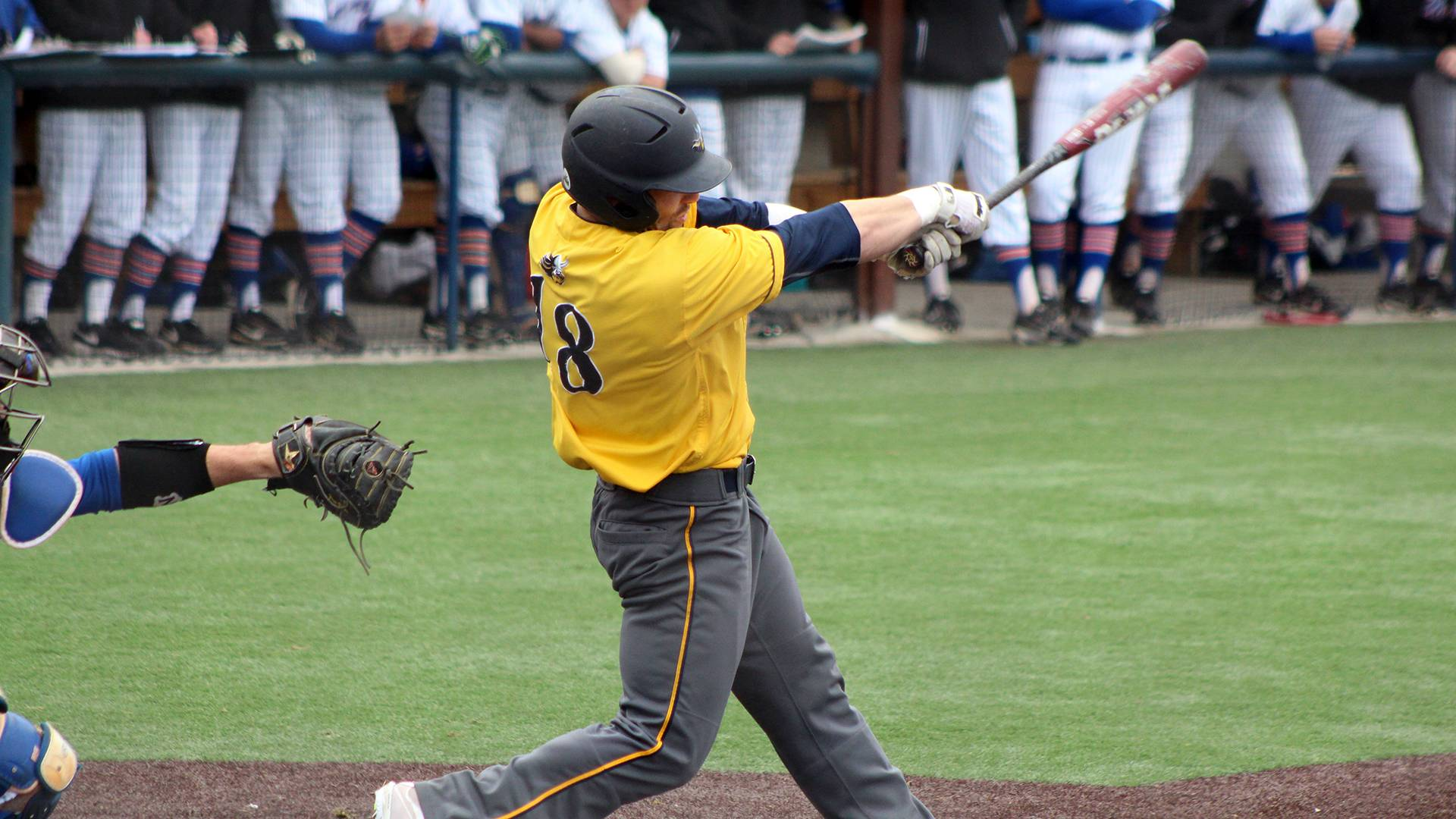 Augustana University Baseball player