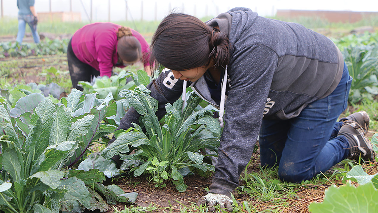 Young people grow a community garden near Mission, SD.