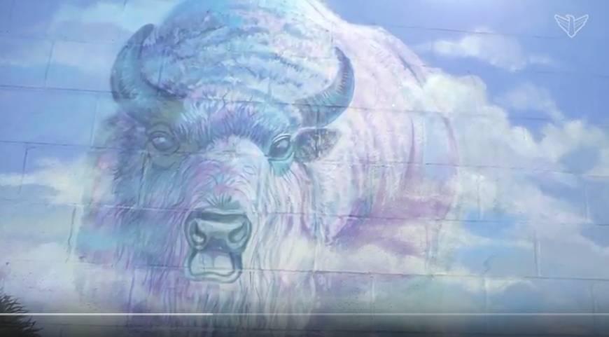 Faulkton Bison mural
