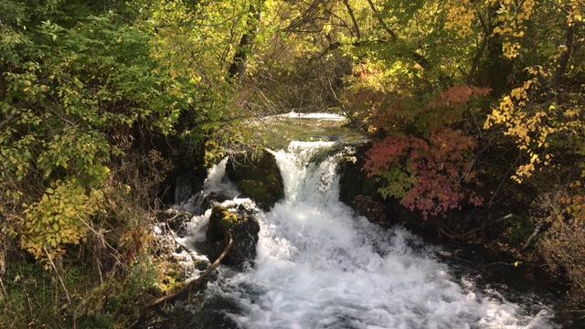 Image - Little Spearfish Creek.jpeg