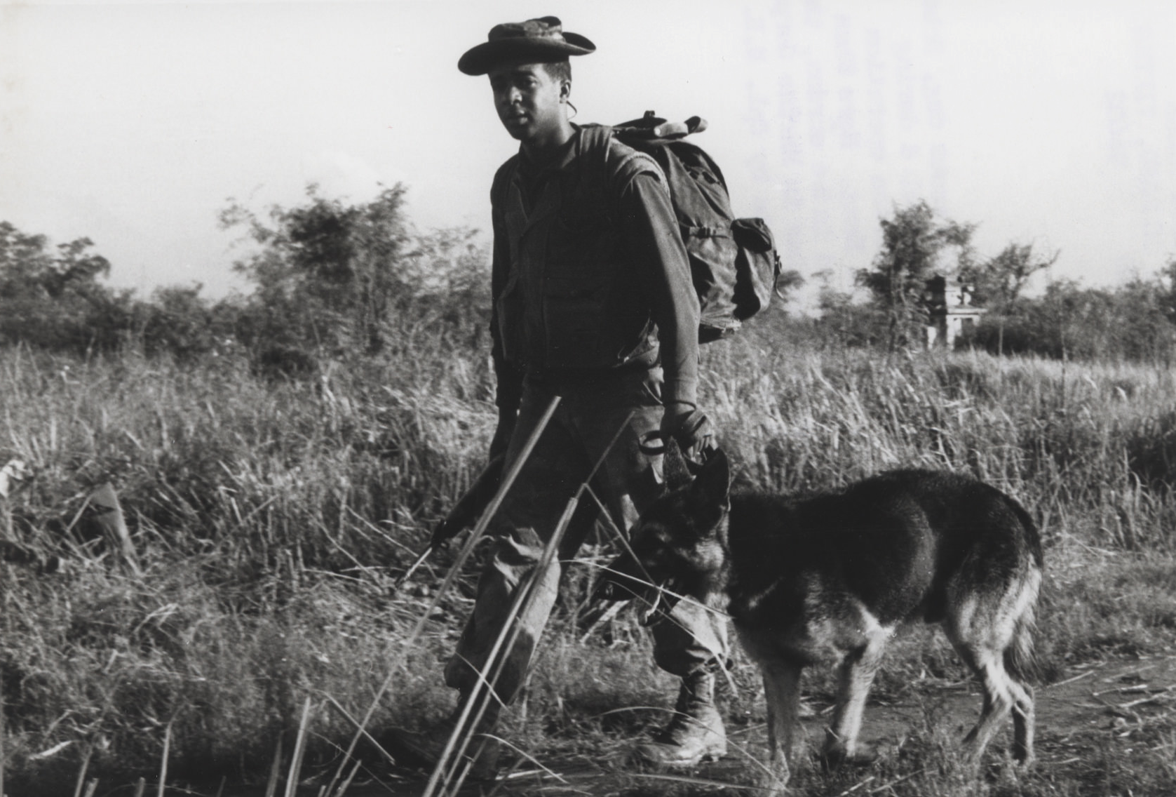 Image - pfc-roame-and-scout-dog-hobo.png