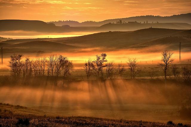 Image - Golden Hour.jpg