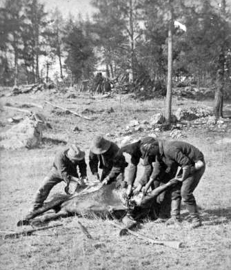 Image - Soldiers_cutting_up_abandoned_horse.png