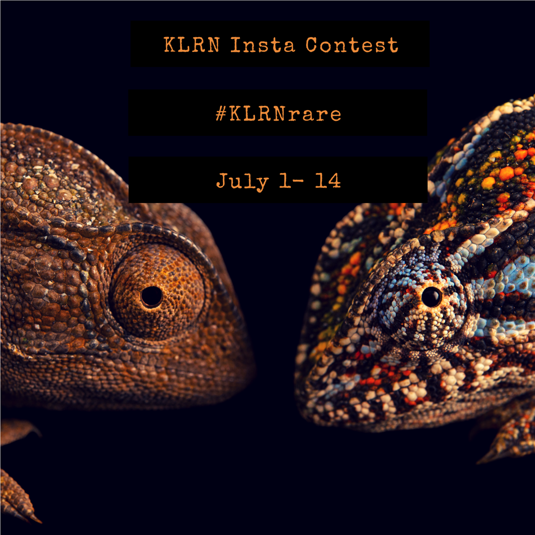 Image - KLRN Insta Contestrevised.png