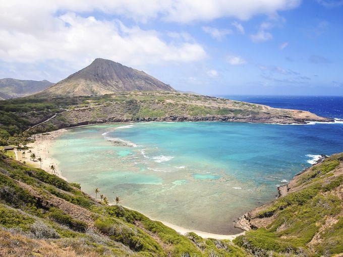 Image - Hawaii.jpg