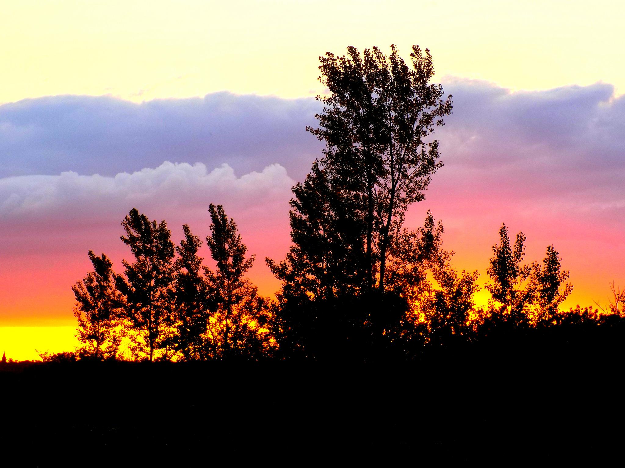 Image - Painted Prairie Sky.jpg