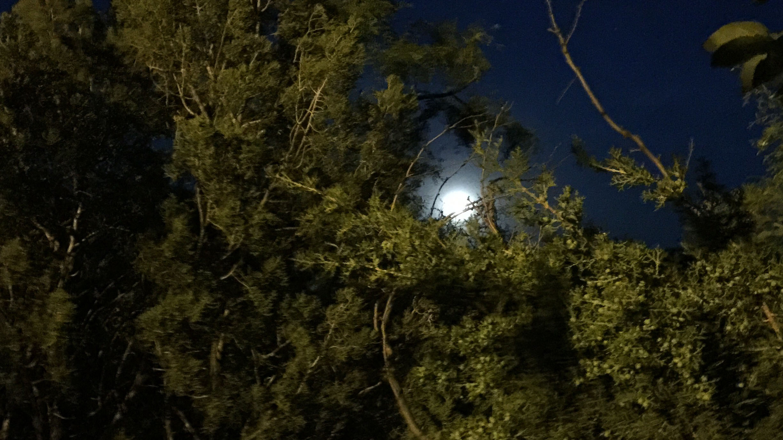 Image - Moon.jpeg
