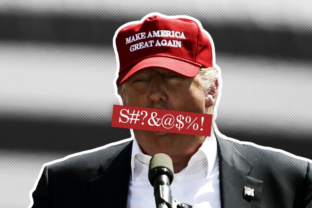 Image - Trump Language 1.jpg