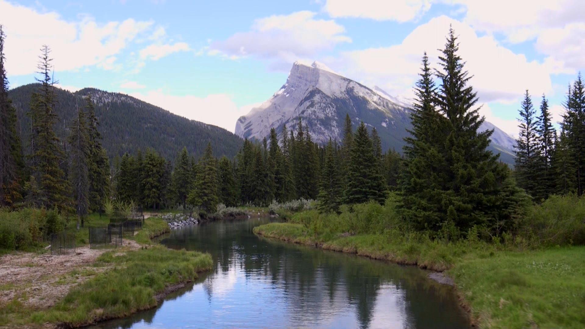 Mountains surrounding Banff