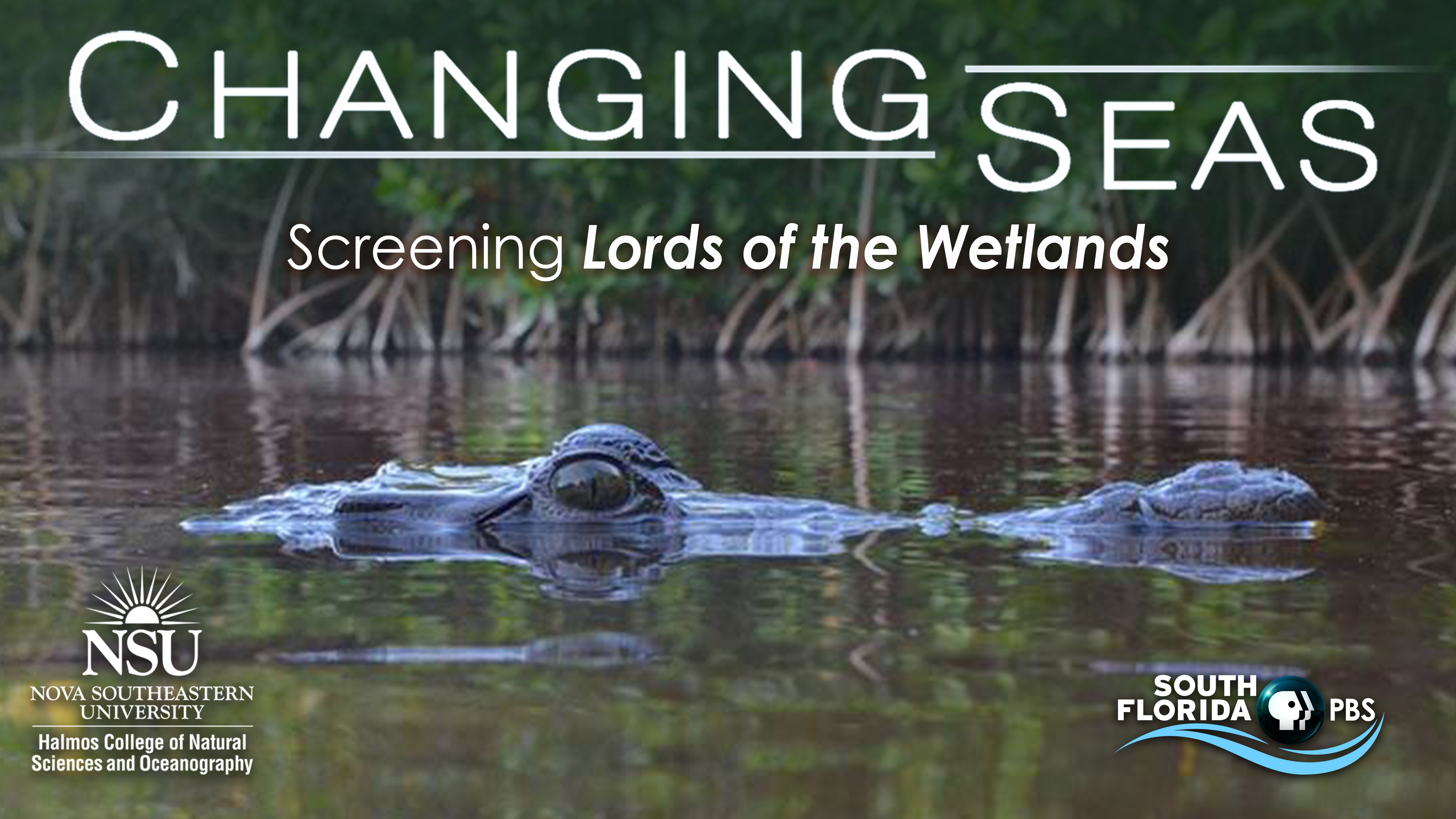 Screening: Lords of the Wetlands
