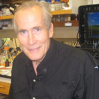 John H. Paul, Ph.D.