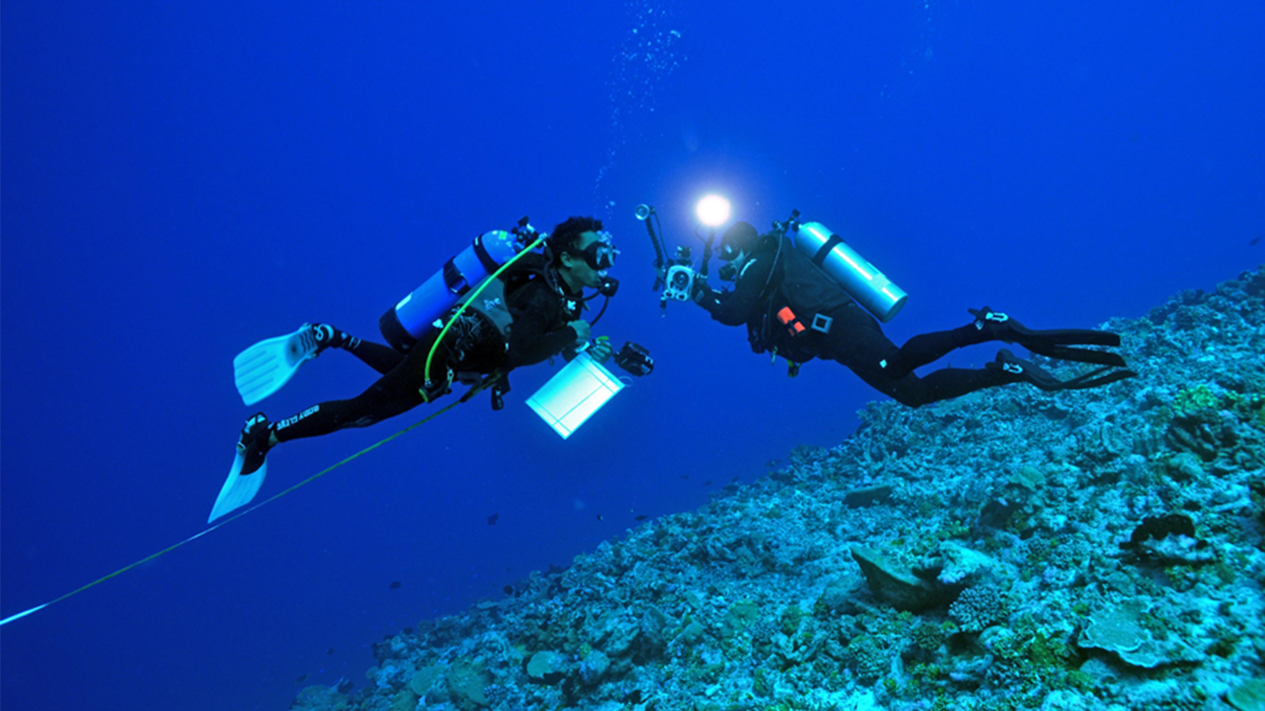 Reefs of Rangiroa