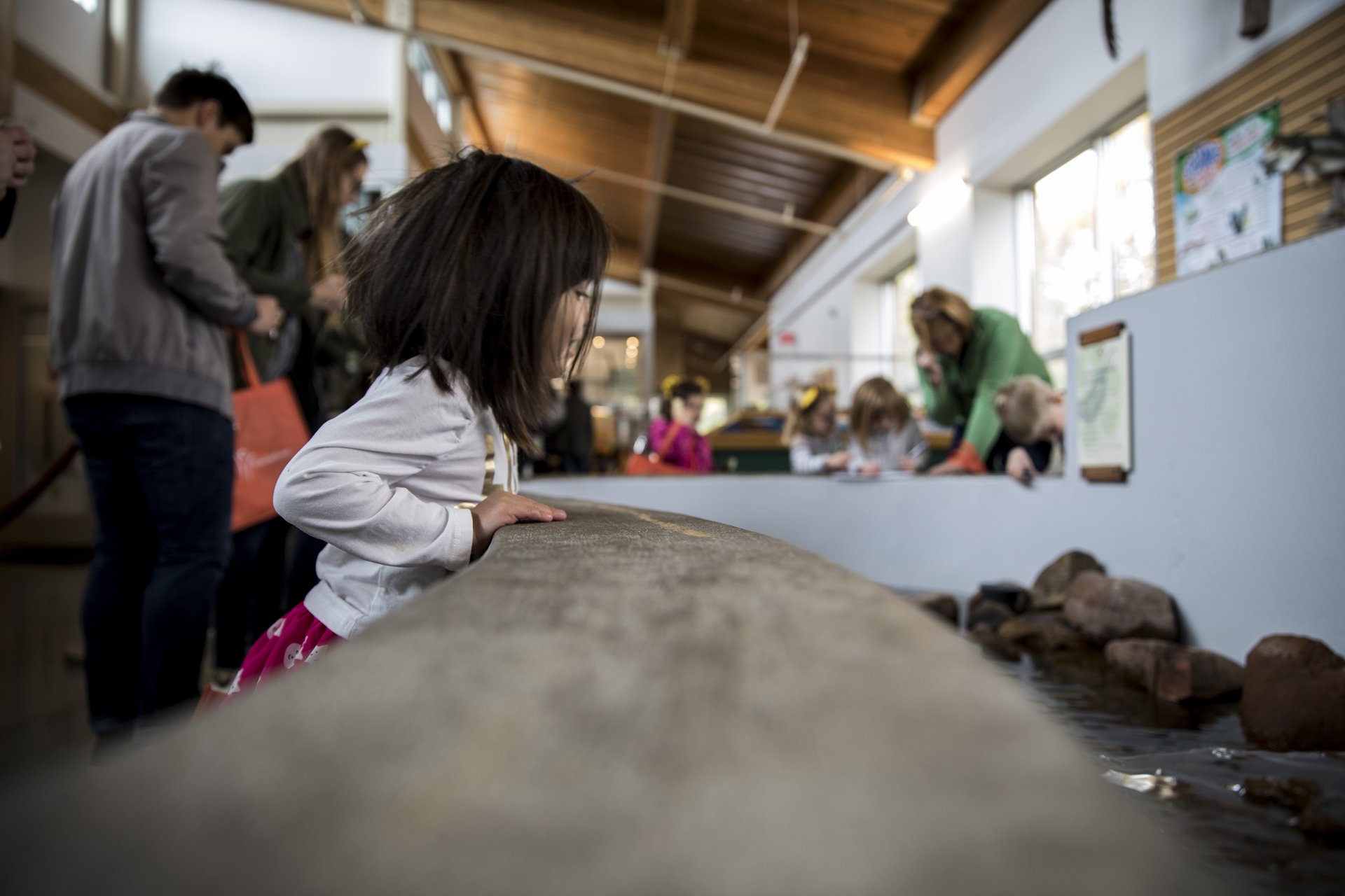 Girl at Discovery Center looking at stream indoors