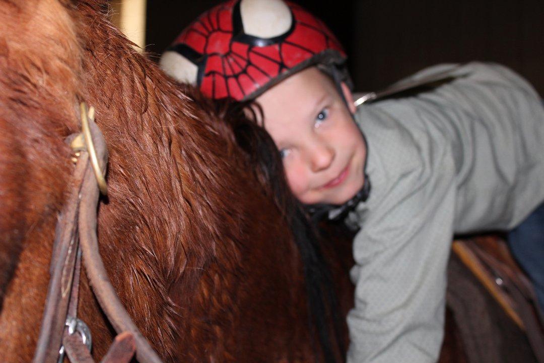 Royce Siemsen Worden horse Hulk Big Sky Little Britches Rodeo Laurel