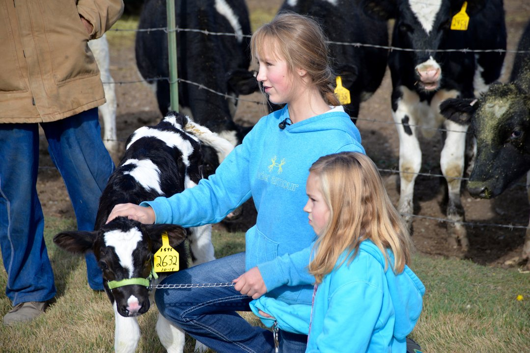 Katherine Bolt and Marian Tuck hold a calf