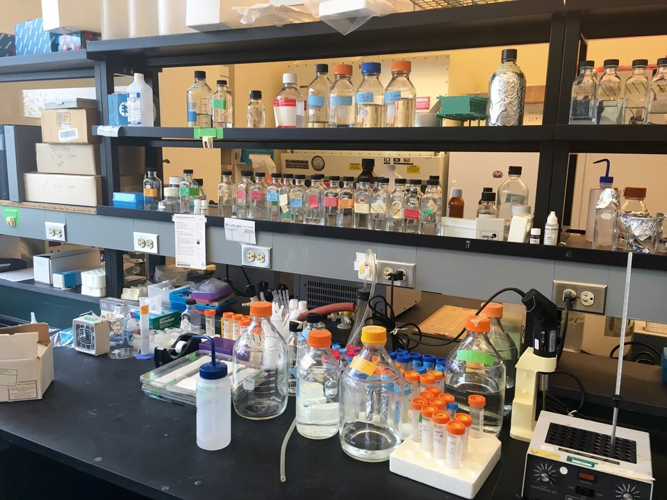 lab ballot public funds grants LcLaughlin Research Institute Great Falls