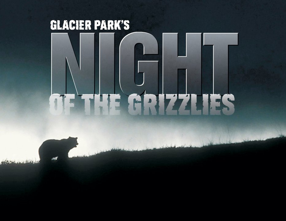 Glacier Parks night of the grizzlies