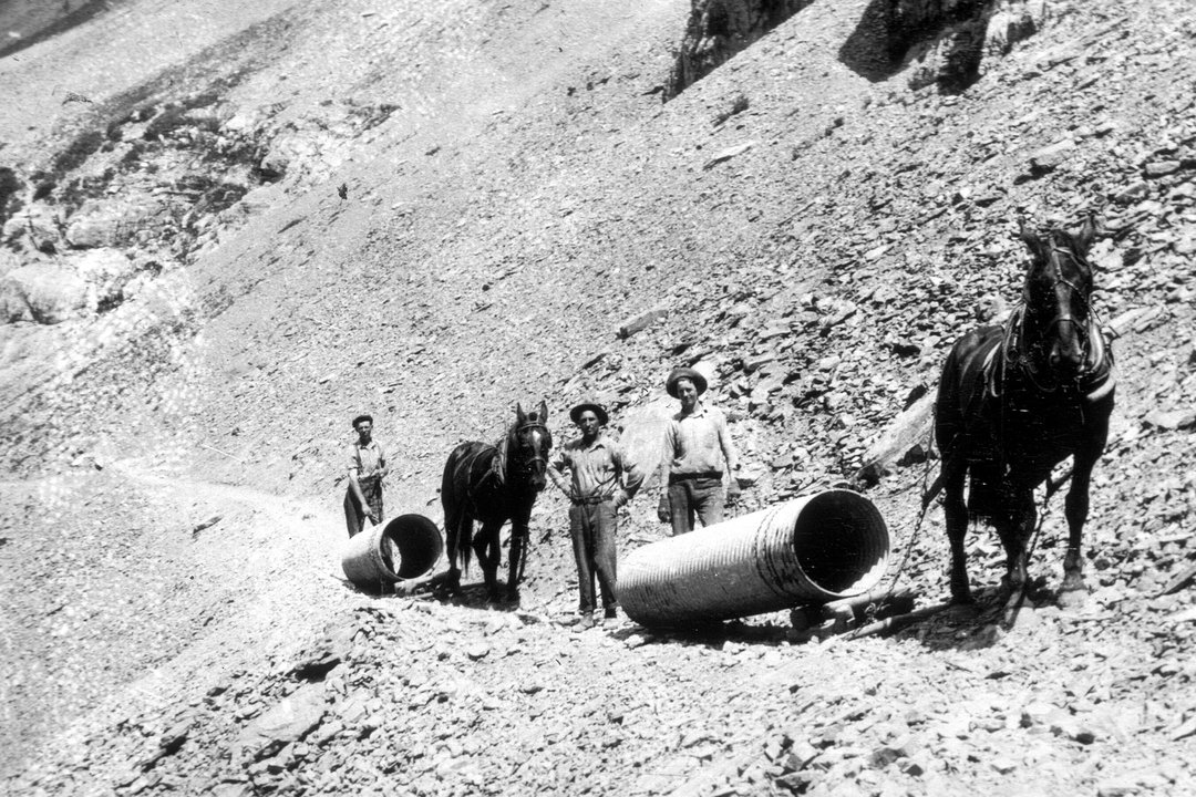 Going-to-the-Sun Road construction horses Glacier Park Archives