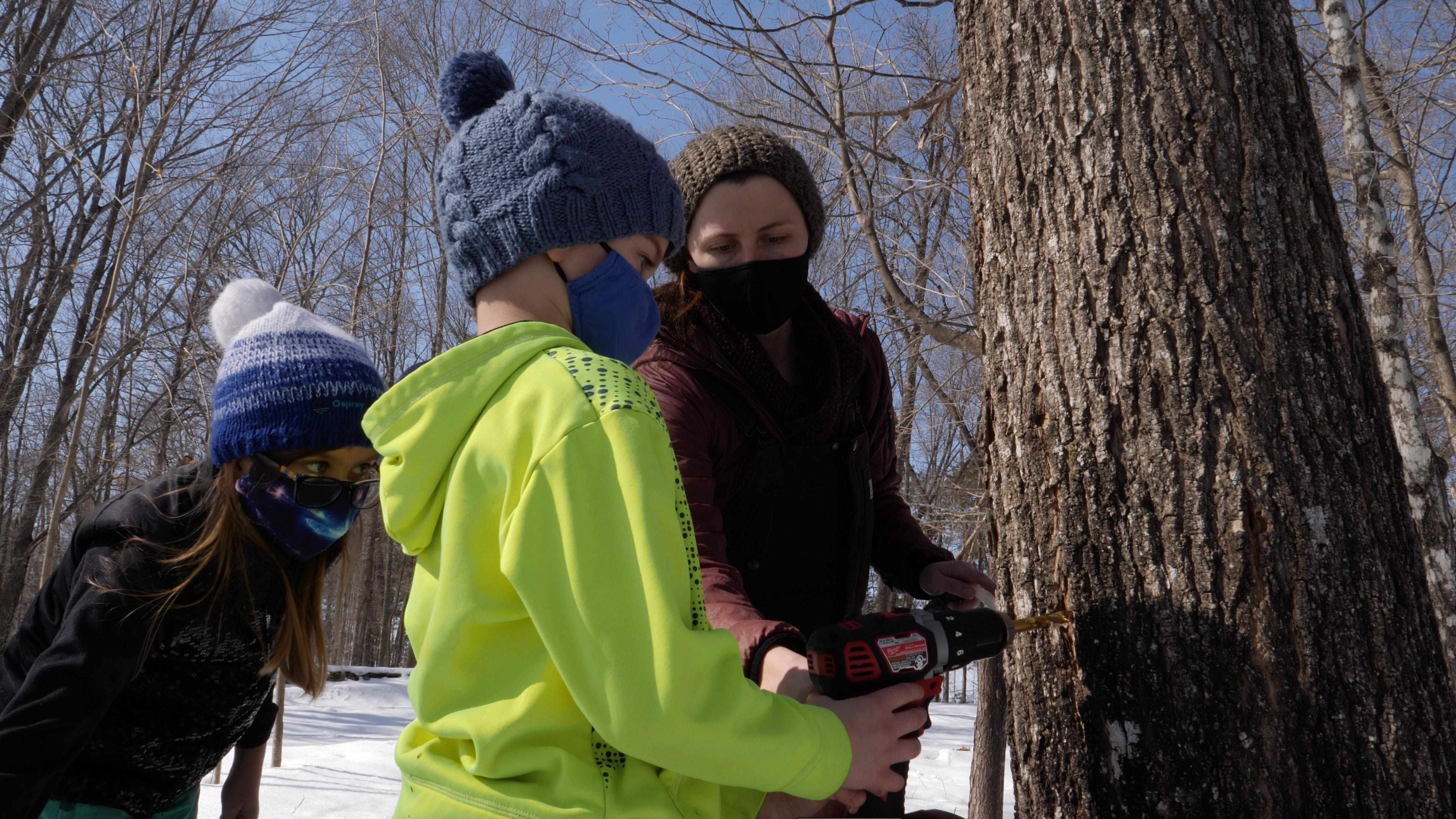 Ashley Bozman helps Henry and Maya Wood drill a hole for a maple syruping tap at Osprey Wilds.
