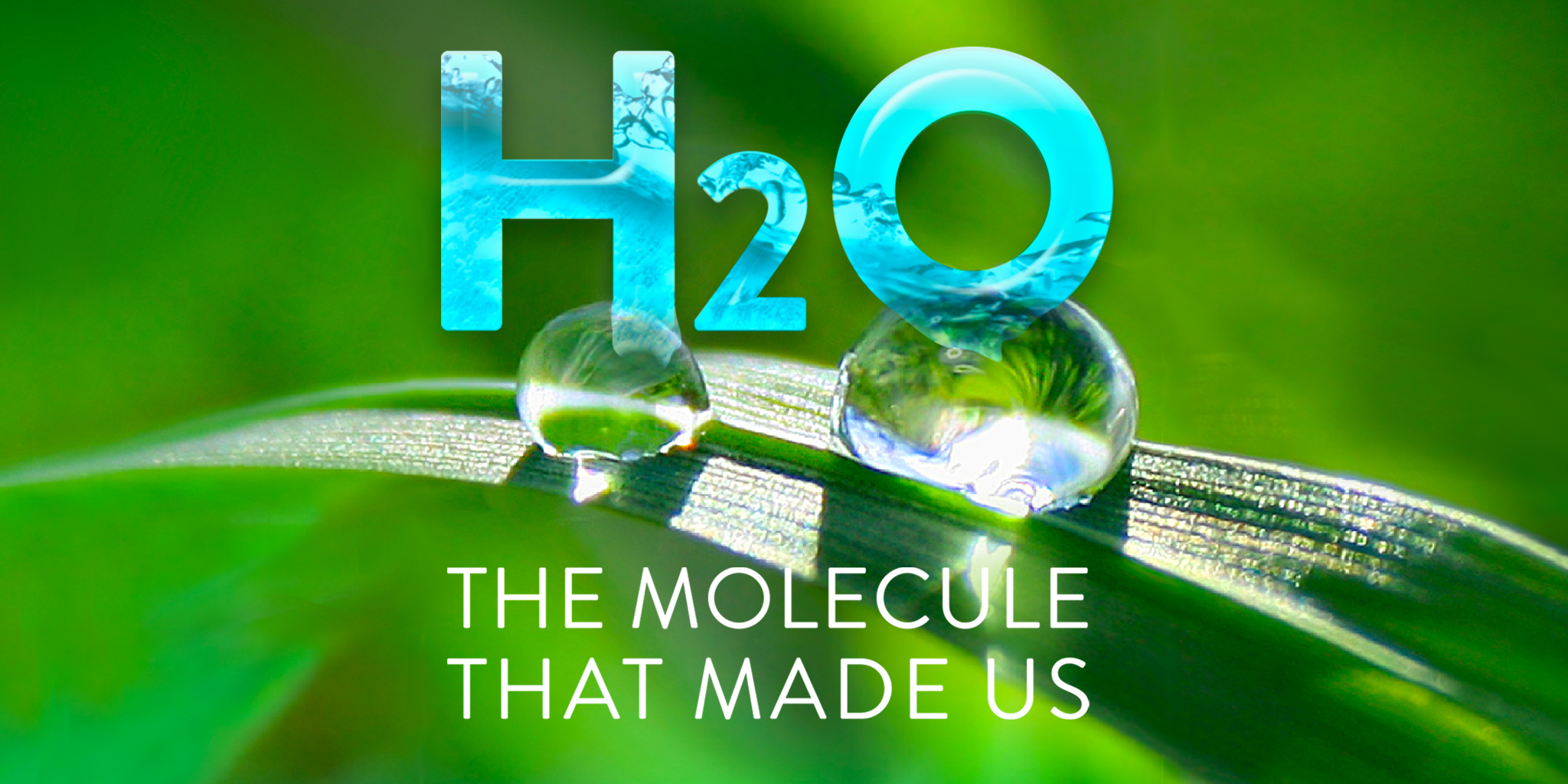 H2o The Molecule That Made Us Credits
