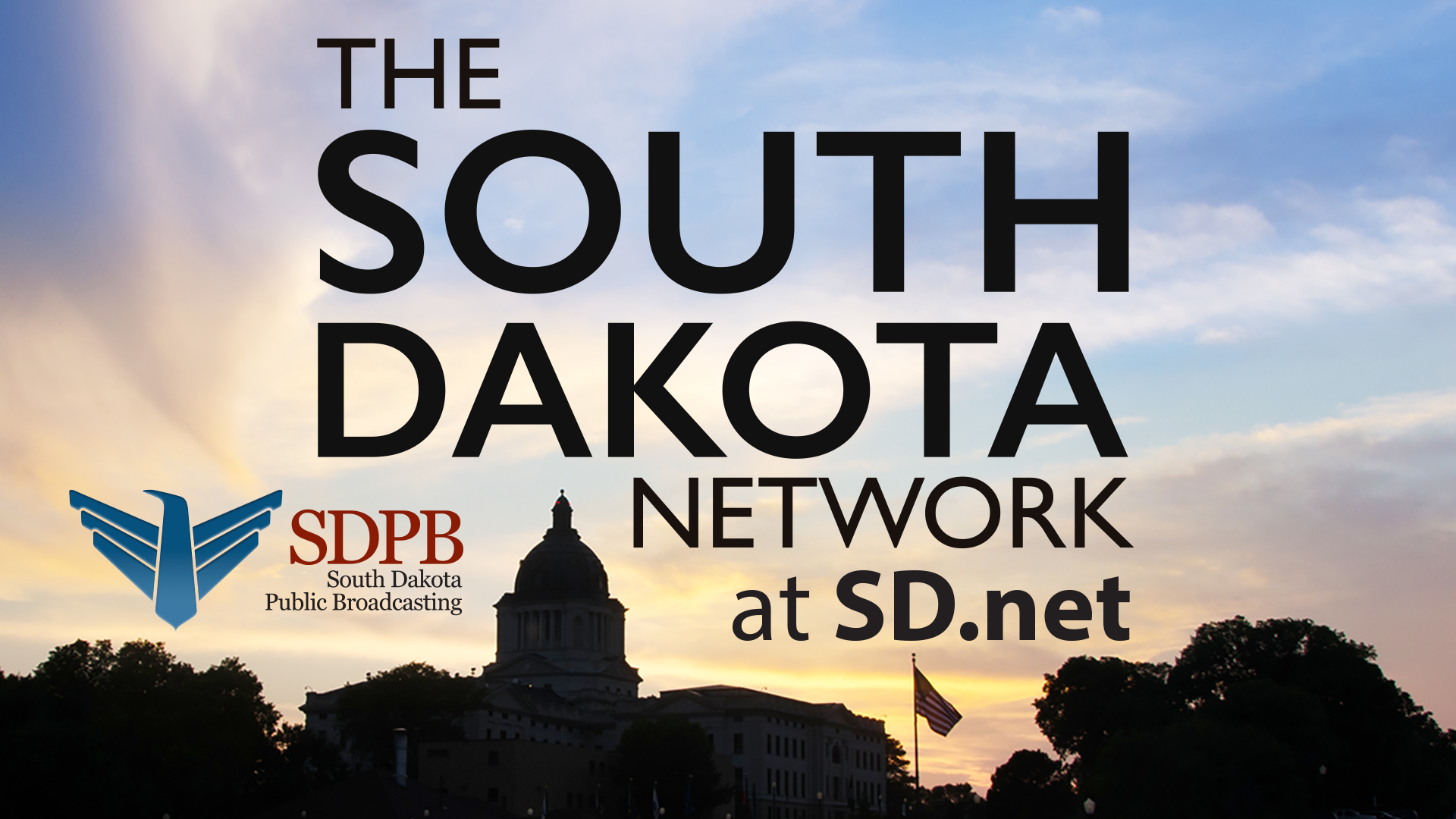 SD.Net Logo