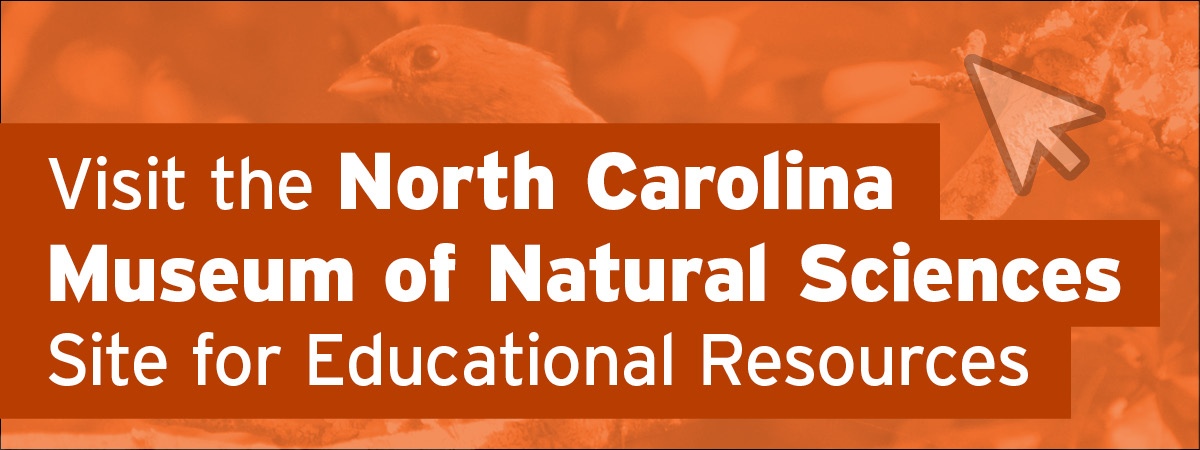 Visit the North Carolina Museum of Natural Sciences Site for Educational Resources