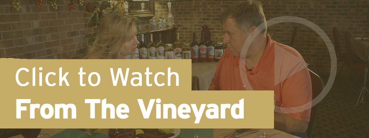 "Click to Watch ""From the Vineyard"