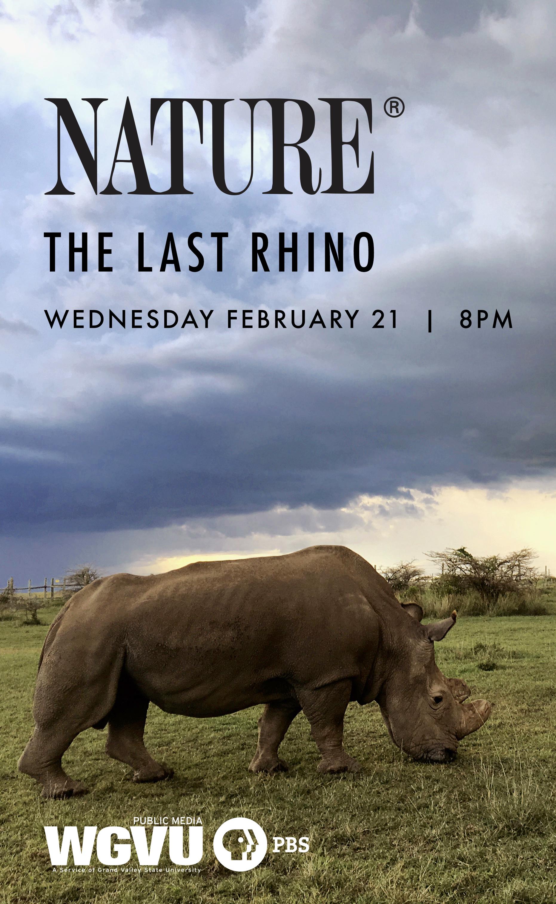 Nature the last rhino  |  Wednesday February 21 8 P M