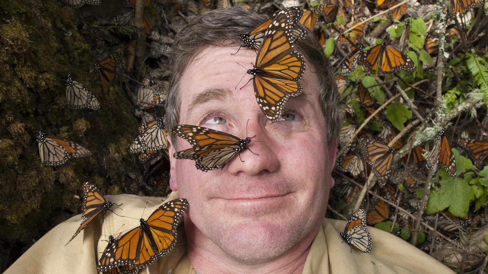 Joel Sartore takes a selfie with Monarch butterflies in the Sierra Chincua monarch sanctuary.