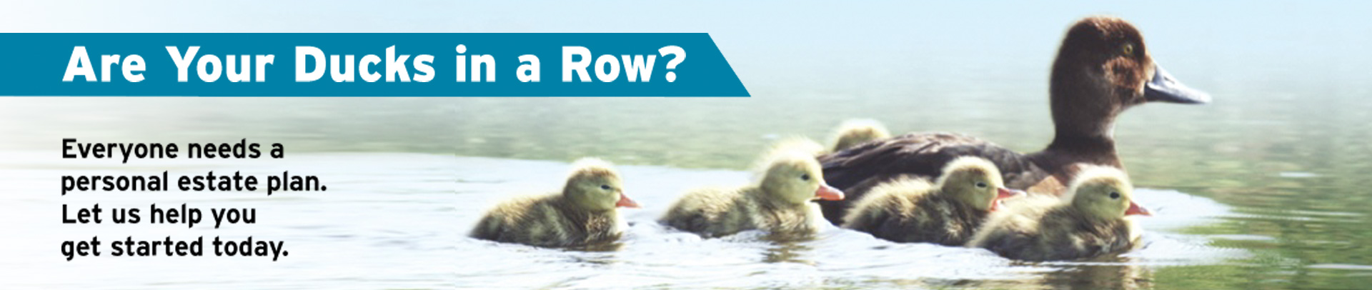 "Ducks on Water: ""Are Your Ducks in a Row? Everyone need a personal estate plan. Let us help you get started today."""