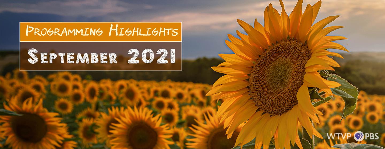 Programming Highlights | September 2021, Field of Sun Flowers