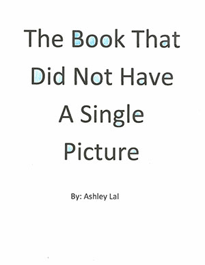 """Third Grade""""The Book that Did Not Have a Single Picture"""""""