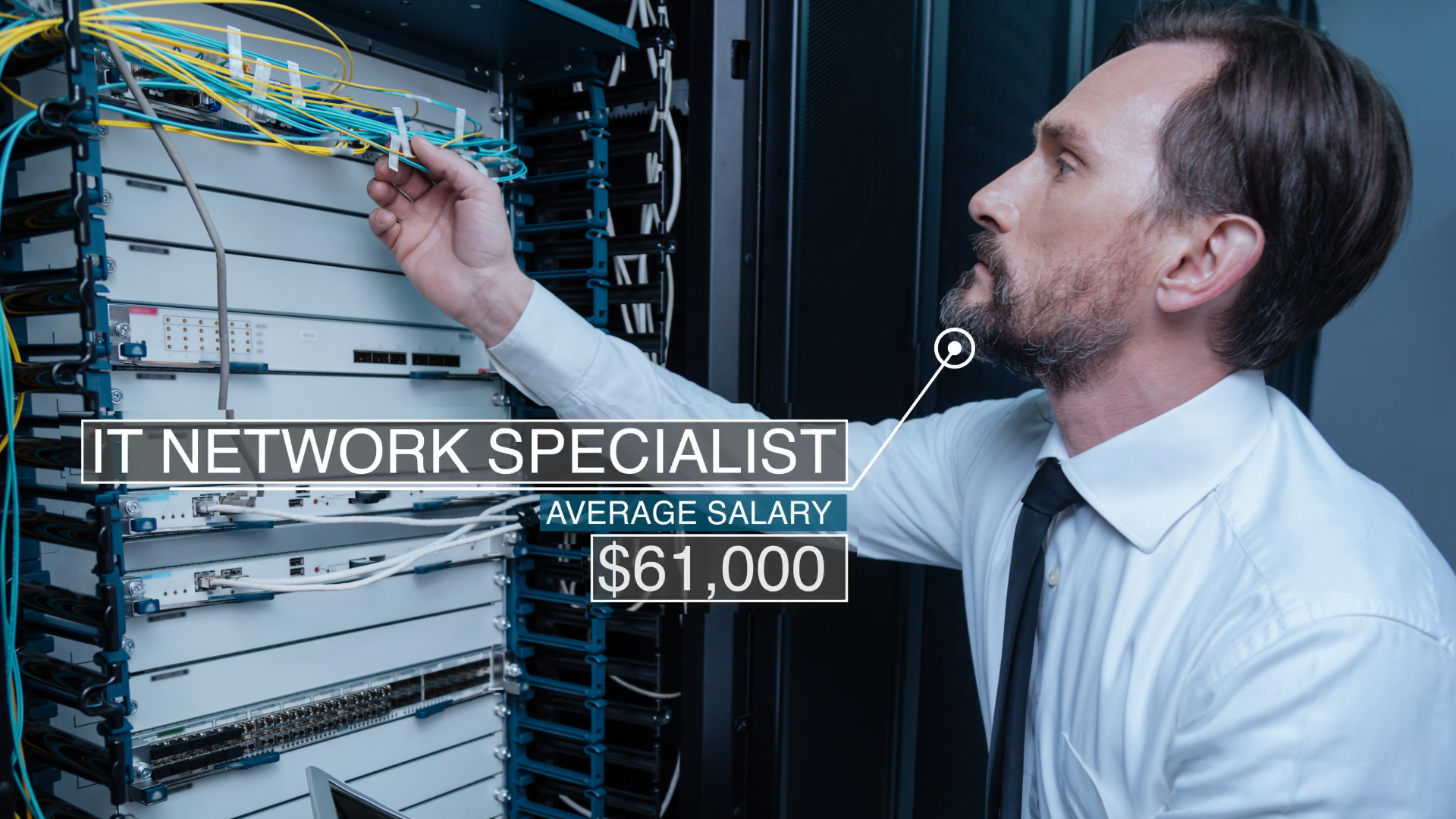 IT Network Specialist
